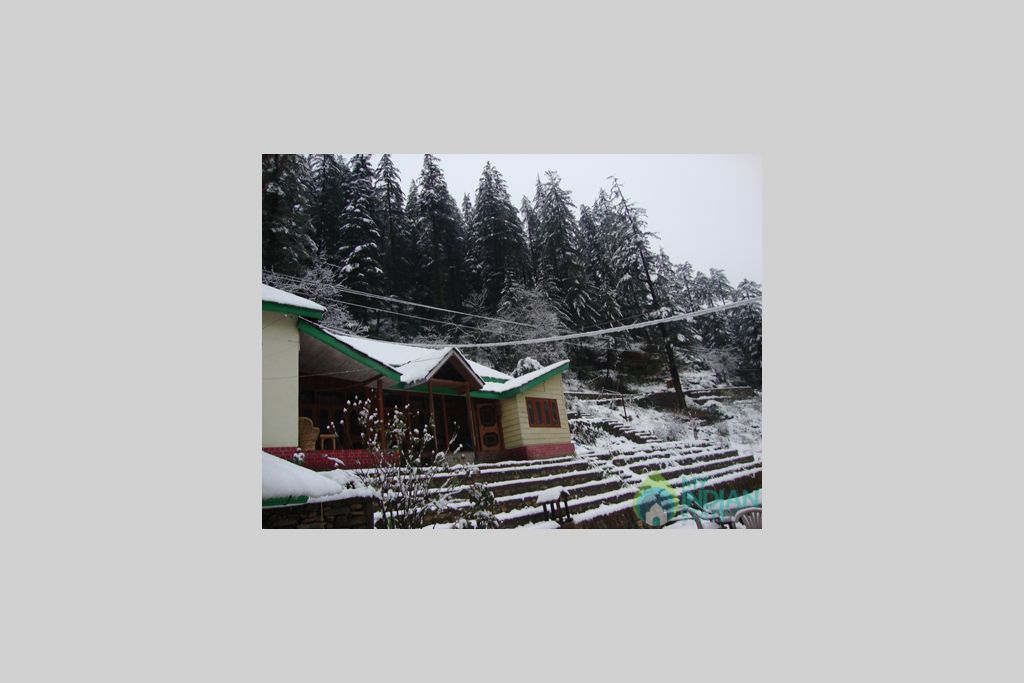 View of the cottage in a Cottage/Huts in Kasol, Himachal Pradesh