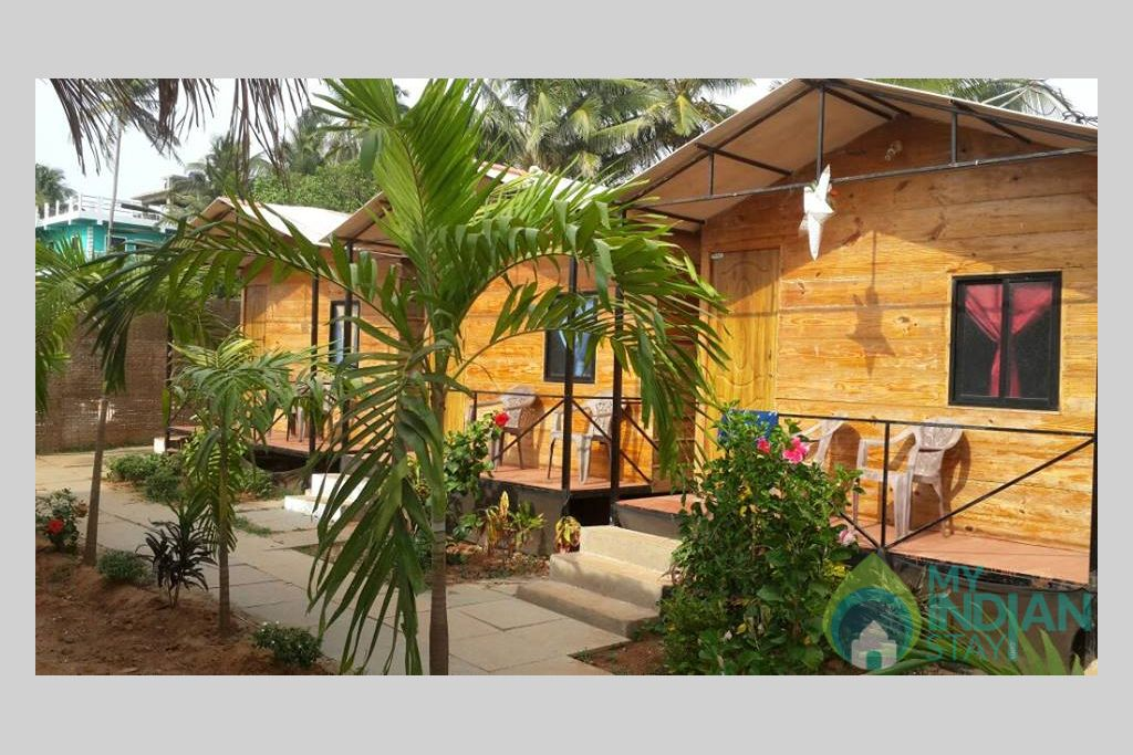 Cottage in a Cottage/Huts in Calangute, Goa