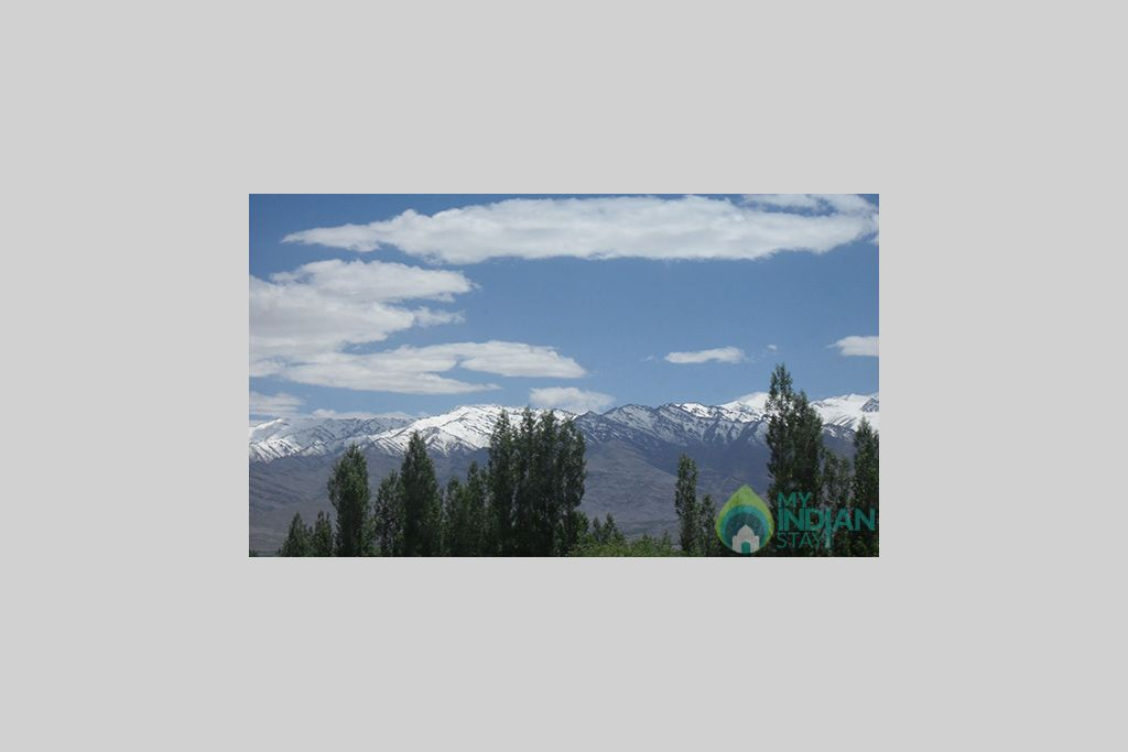 Scenic View  in a Hotel in Leh, Jammu and Kashmir