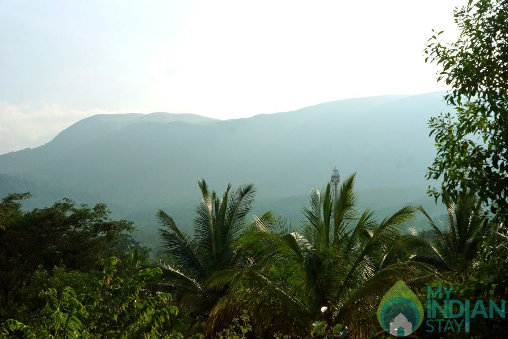 Joes- Outside View in a HomeStay in Chikmagalur, Karnataka