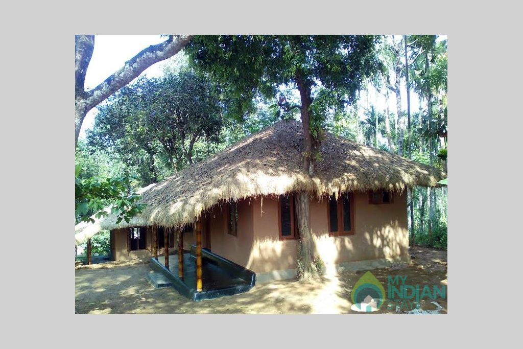 Hut in a Resort in Kenichira, Kerala