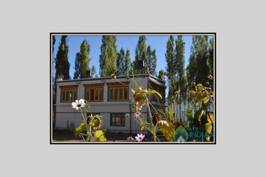 16 in a Guest House in Leh, Jammu and Kashmir