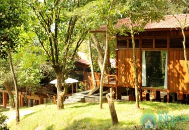 Vacation in a Nature Trail- Coorg