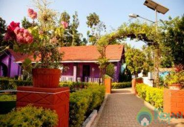 Beautiful Non AC Cottages In Palolem