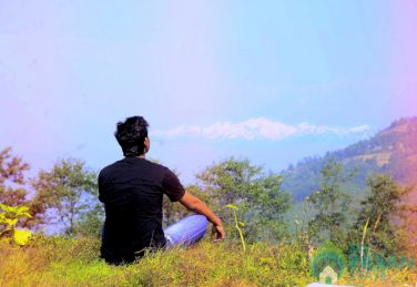 Stay in a Tea Estate in Darjeeling