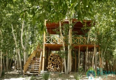 Untouched Natural Bounty In A Tree House In Leh