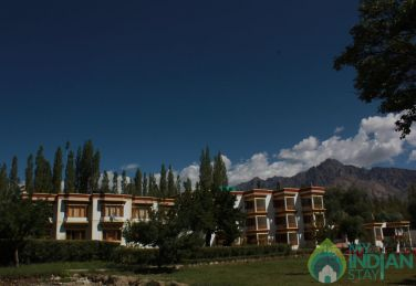Relaxing Environment To Stay In Leh