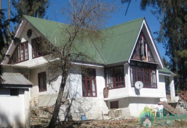 Rejuvenate Your Mind And Stay In Shimla, HP