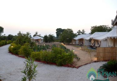 Pleasant Place To Your Stay In Pushkar, Rajasthan