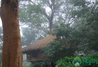 Single Bedroom Cottages in Wayanad