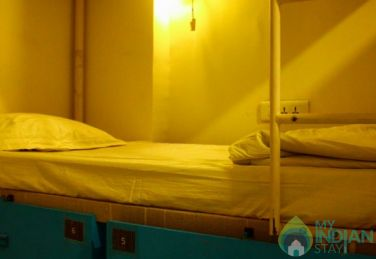 AC 6 Bed Mixed Dorm Stay In Jaipur, Rajasthan