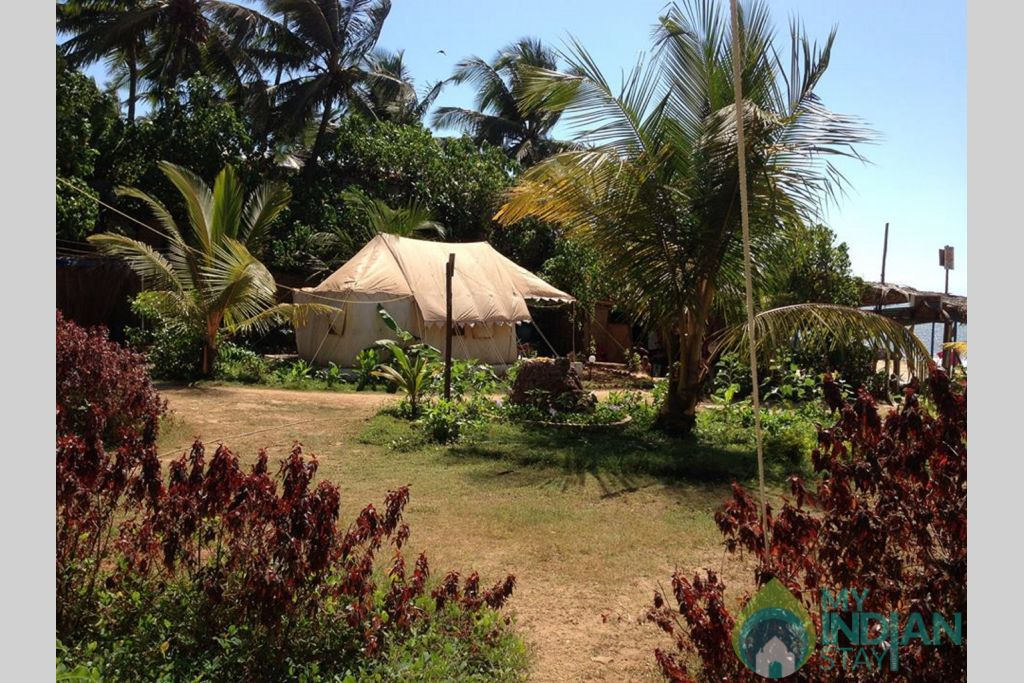 Property in a Tents in Anjuna, Goa