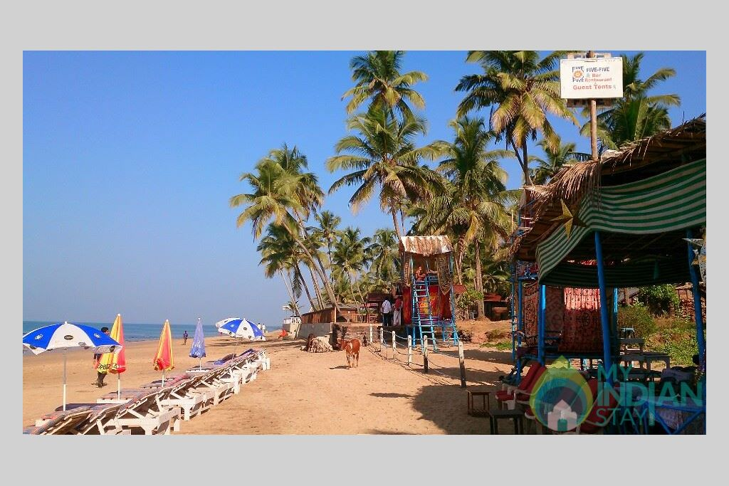 view of beach  in a Tents in Anjuna, Goa