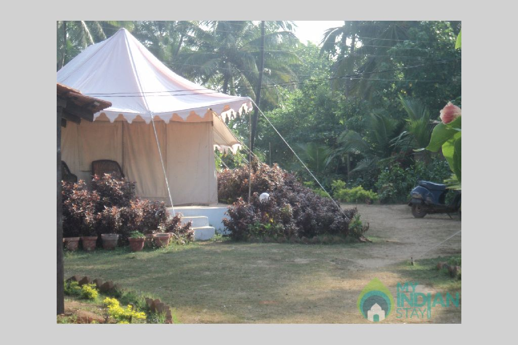 Tent in a Tents in Anjuna, Goa