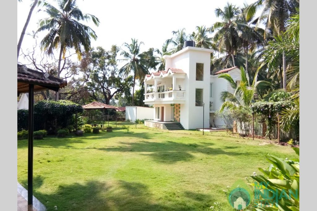 Garden in a Serviced Apartment in Calangute, Goa