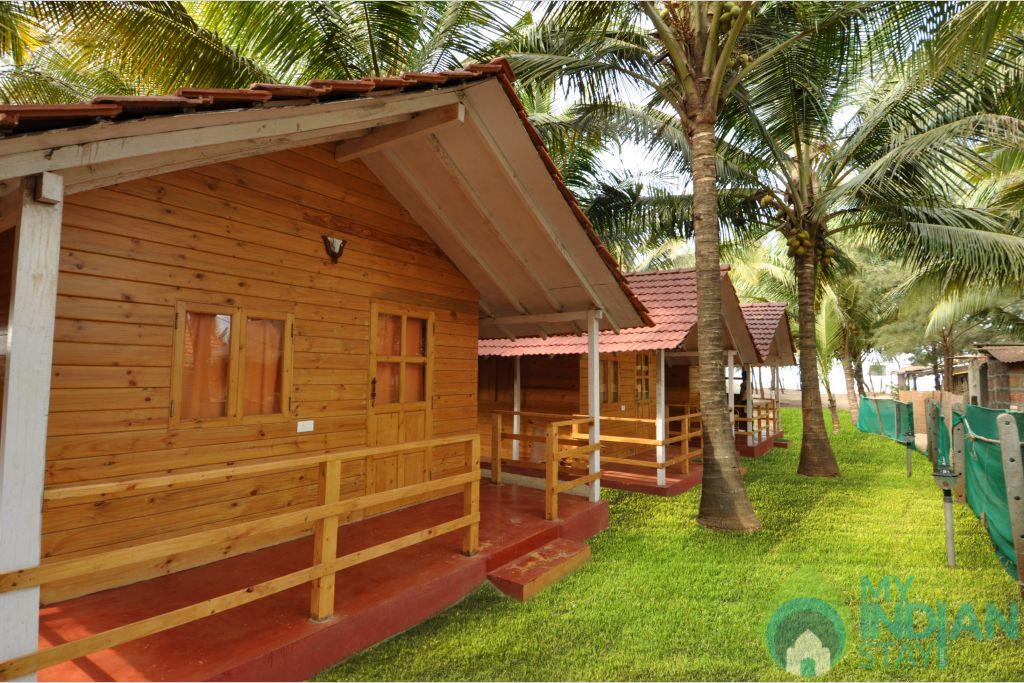 C 5 in a Cottage/Huts in Morjim, Goa