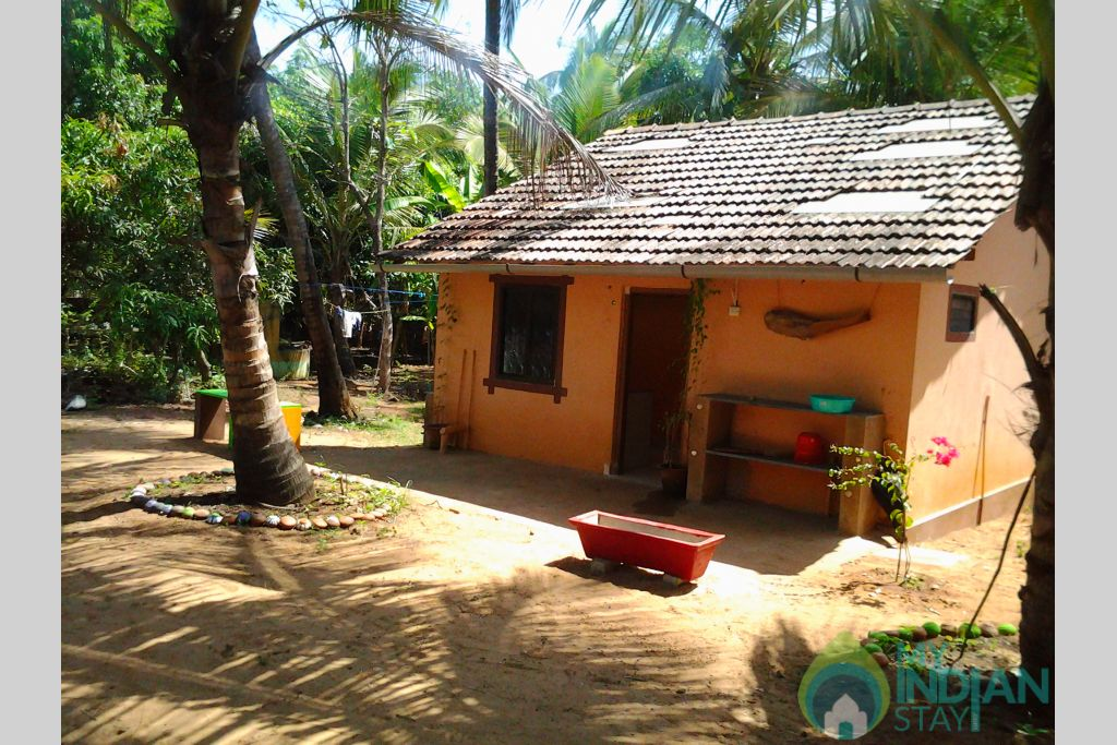 backyard in a Cottage/Huts in South Goa, Goa