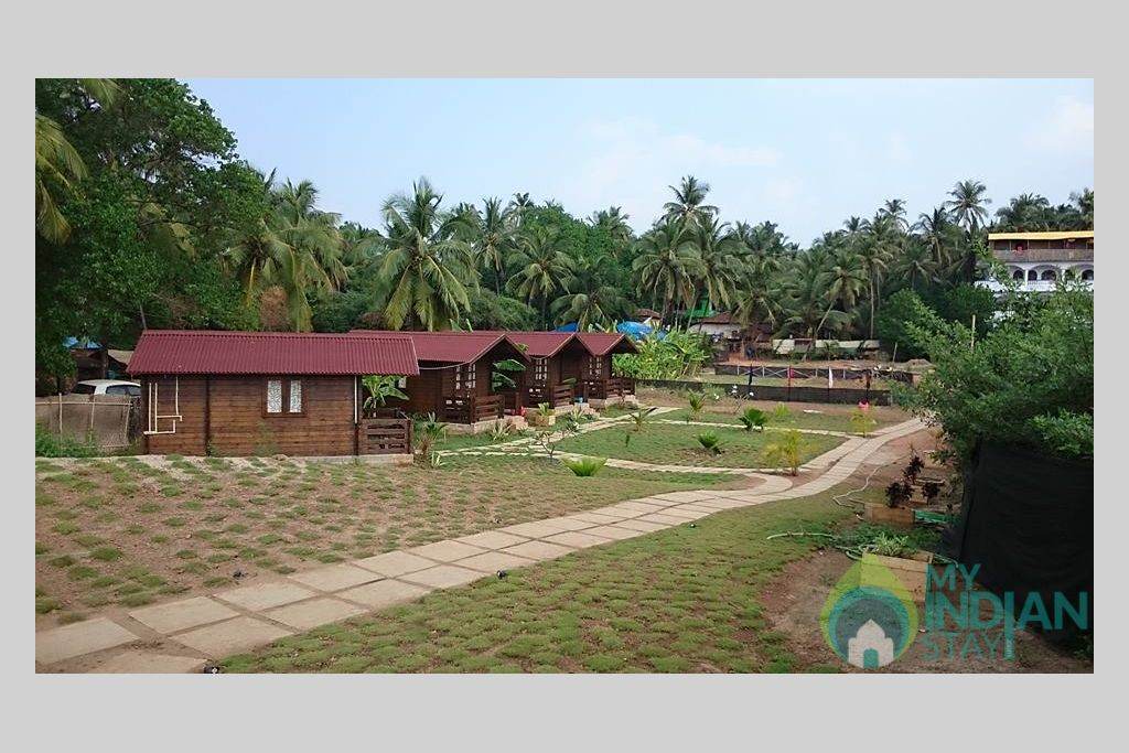 Overall view in a Cottage/Huts in Arambol, Goa