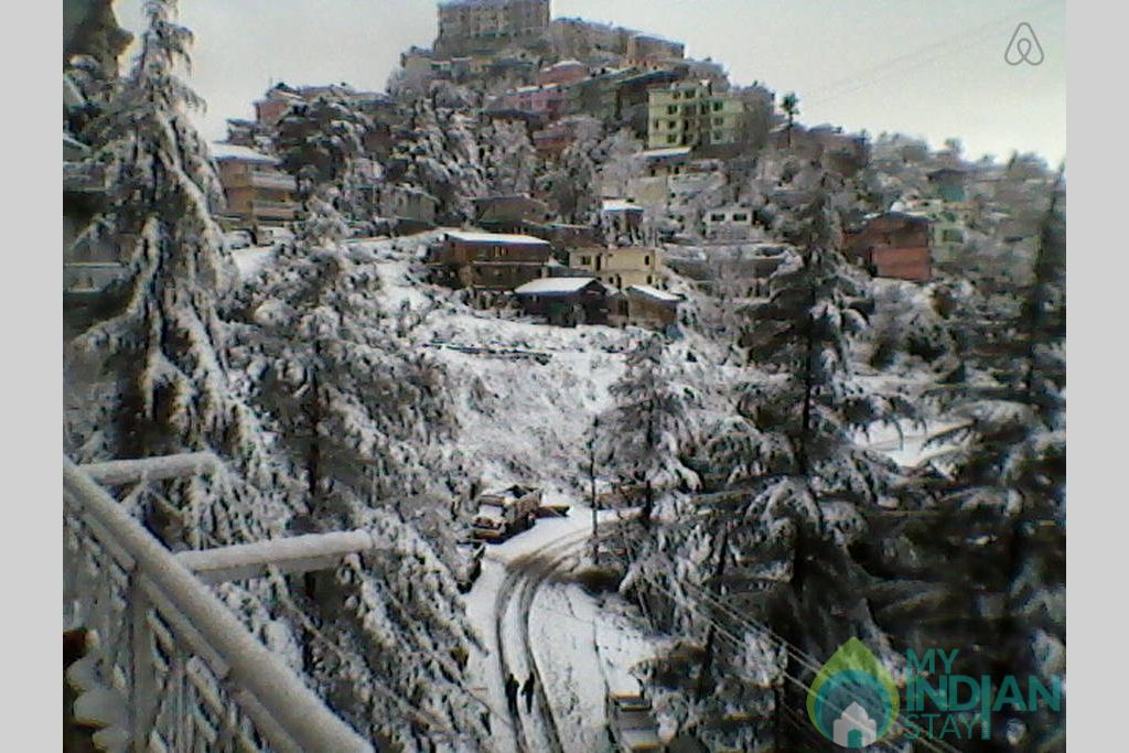 Snow covered  in a Bed & Breakfast in Shimla, Himachal Pradesh