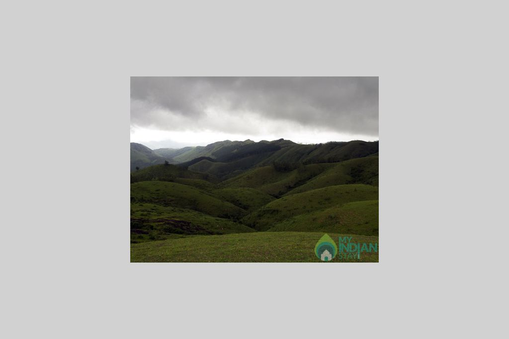 Vgamon Meadows in a HomeStay in Vagamon, Kerala