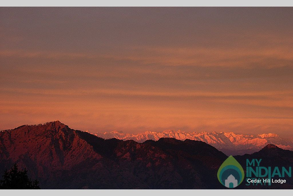All Rooms View - Shali Tibba Peak - View from Cedar Hill (Winters) in a Bed & Breakfast in Kufri, Himachal Pradesh