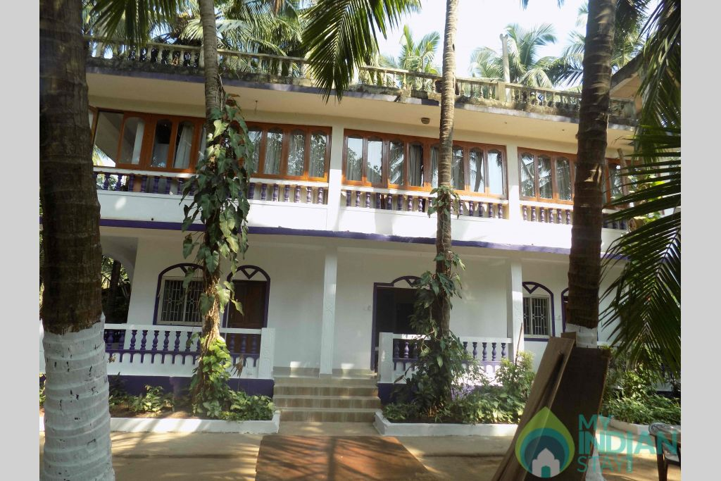 Outside View in a Cottage/Huts in Mandrem, Goa