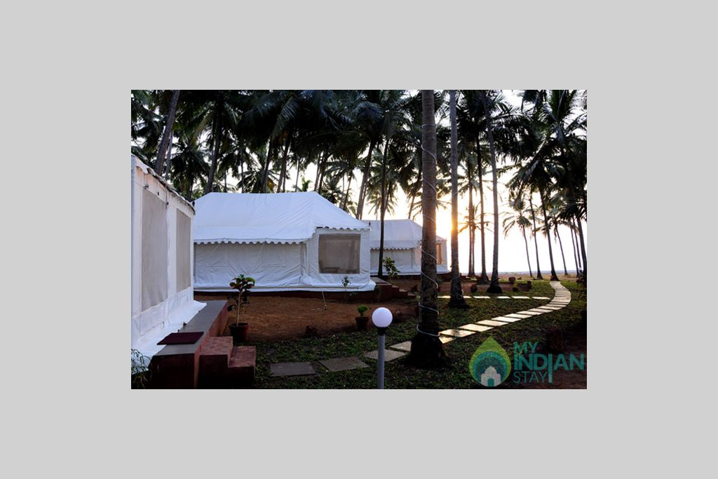 Tents View in a Cottage/Huts in Mandrem, Goa