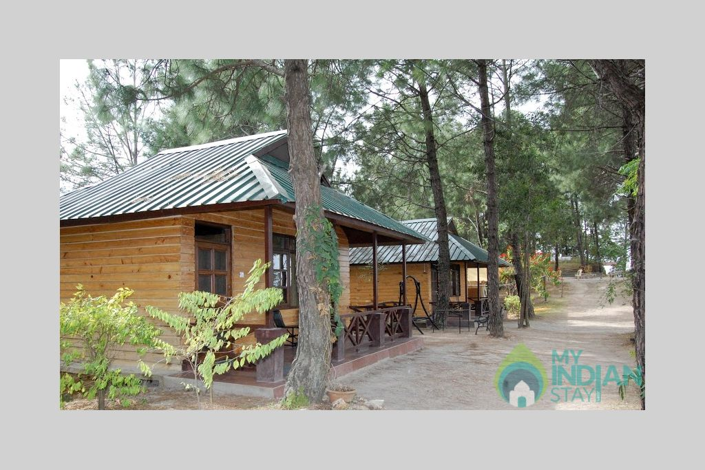 Premium Cottage in a Cottage/Huts in Shimla, Himachal Pradesh