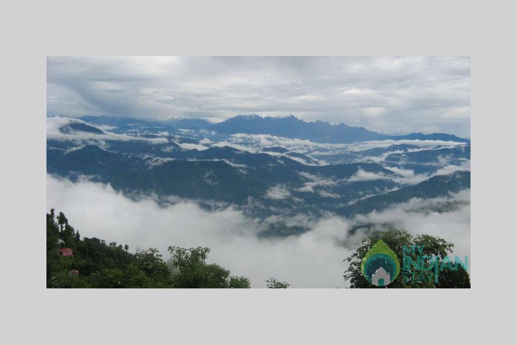 37128828 in a Bed & Breakfast in Darjeeling, West Bengal