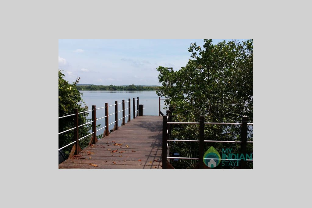 THE JETTY WITH NATURAL MANGROVE GARDEN in a Cottage/Huts in Velha Goa, Goa