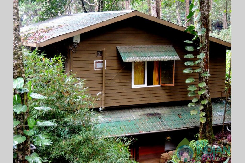in a Bed & Breakfast in Munnar, Kerala