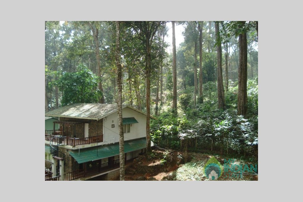 Surounding View in a Bed & Breakfast in Munnar, Kerala