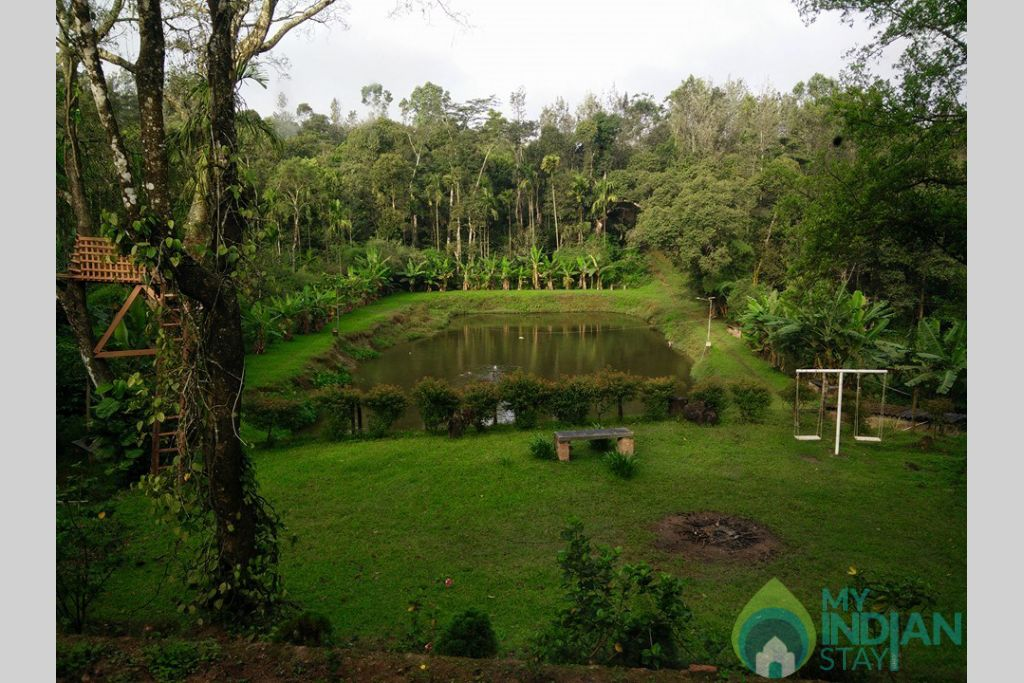 Hidden Valley--Pond in a HomeStay in Chikmagalur, Karnataka