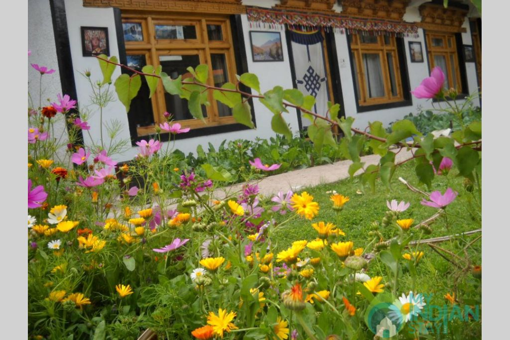 Image 1 in a Guest House in Leh, Jammu and Kashmir
