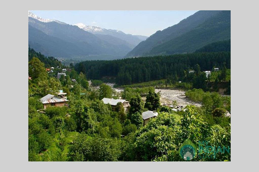 Surrounding  in a Guest House in Manali, Himachal Pradesh