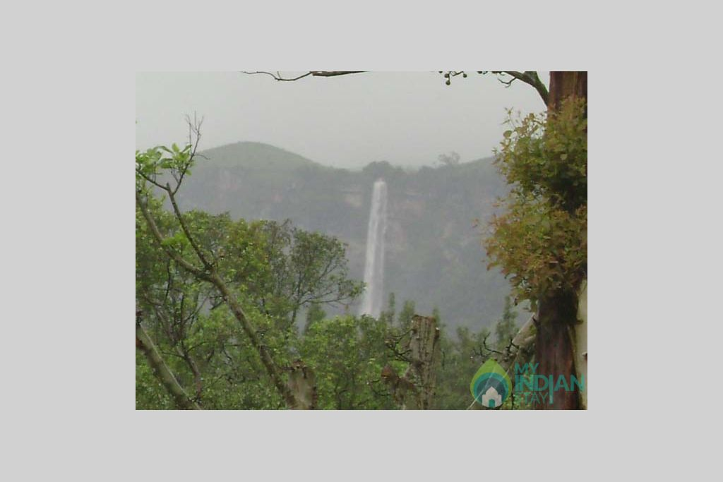 Ozone--Waterfall in a HomeStay in Chikmagalur, Karnataka