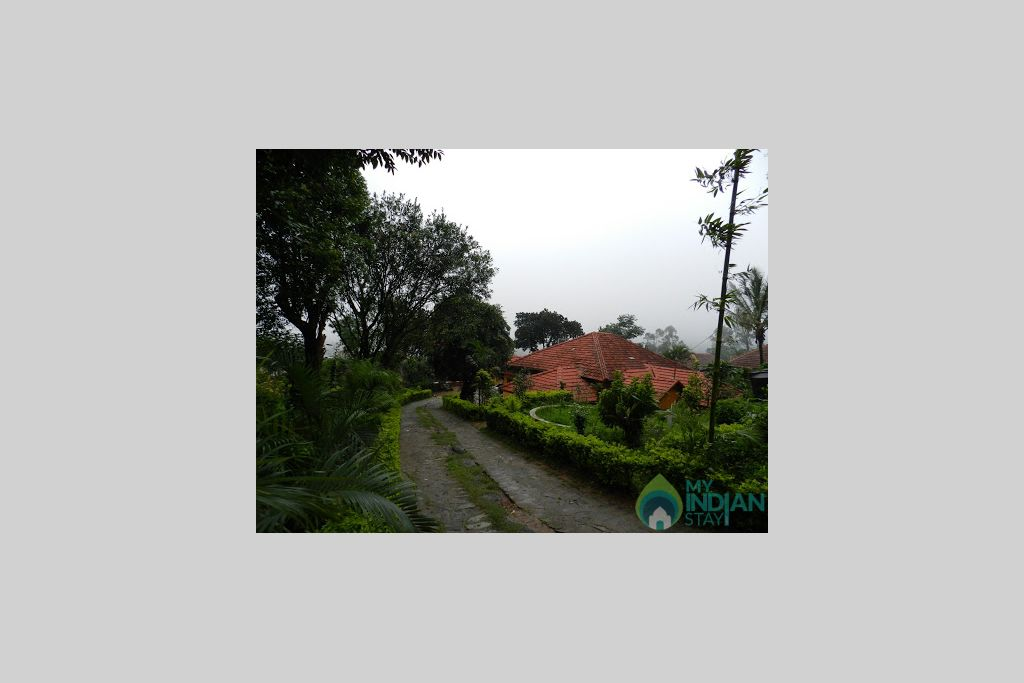 View in a HomeStay in Madikeri, Karnataka