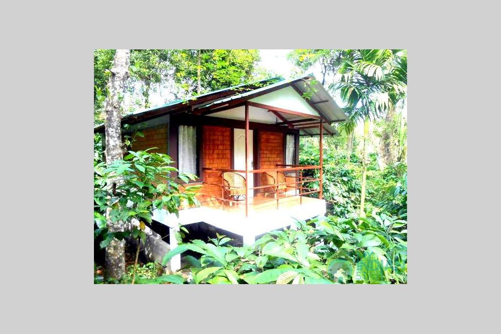 one bedroom cottage 2 - Copy in a HomeStay in Kalpetta, Kerala