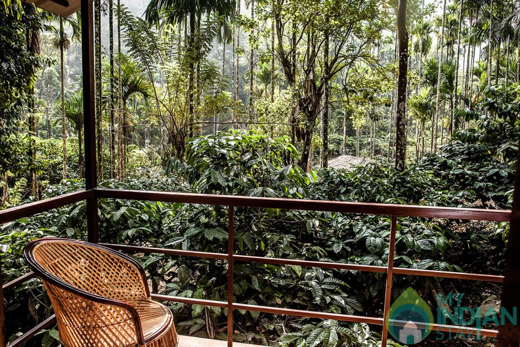 one bedroom cottage balcony in a HomeStay in Kalpetta, Kerala