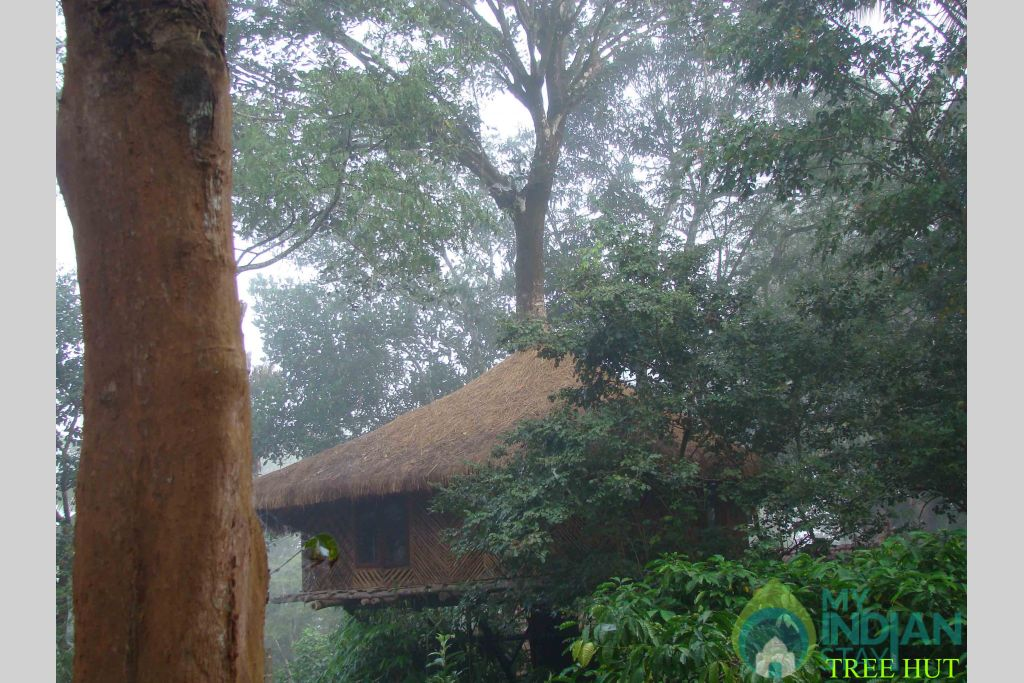9-TREE HUT in a Resort in Kenichira, Kerala