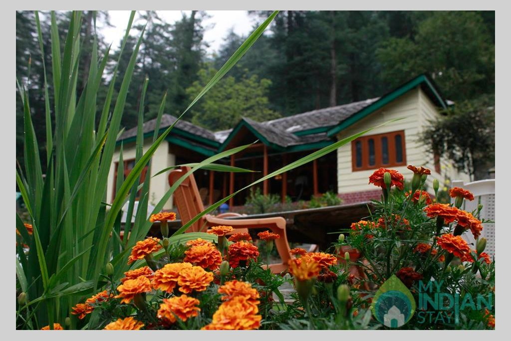 Overall View2 in a Cottage/Huts in Kasol, Himachal Pradesh