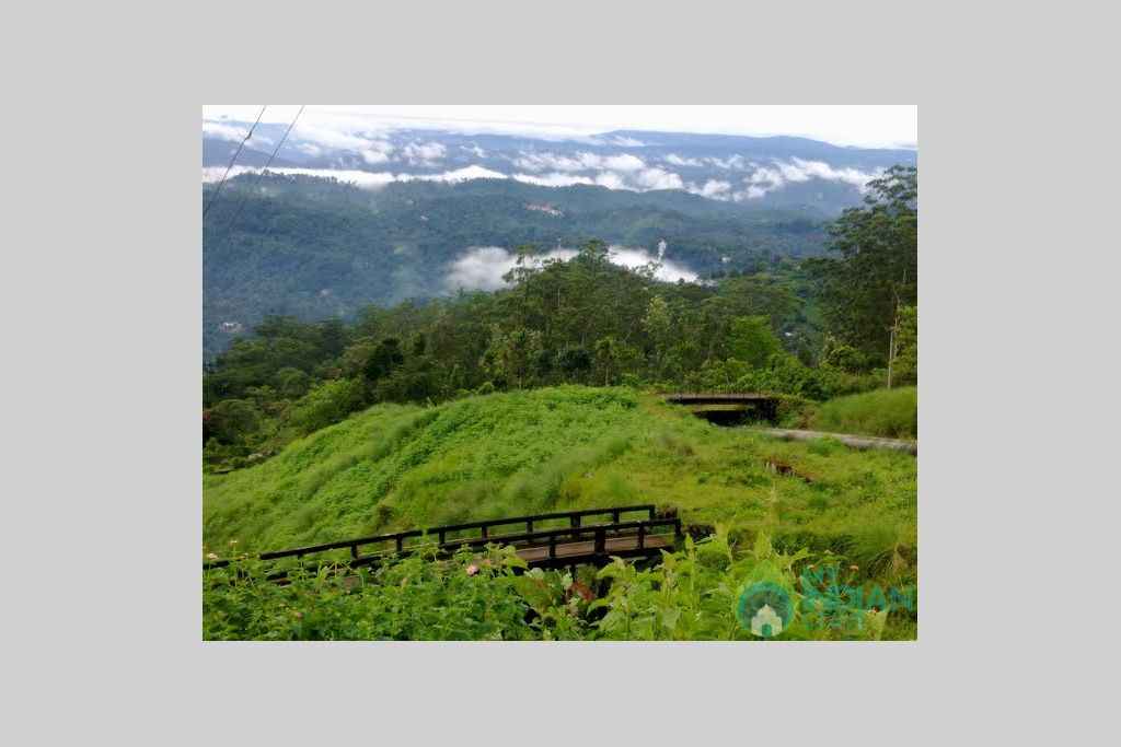 Mountain View in a Bed & Breakfast in Munnar, Kerala