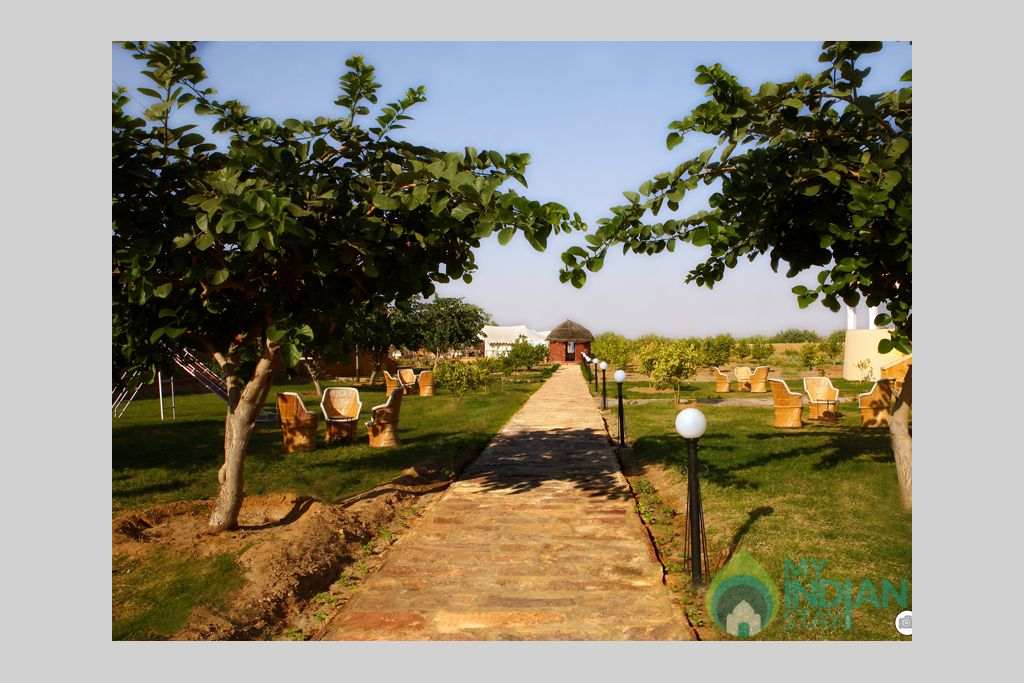 Garden-Area in a Cottage/Huts in Jaisalmer, Rajasthan