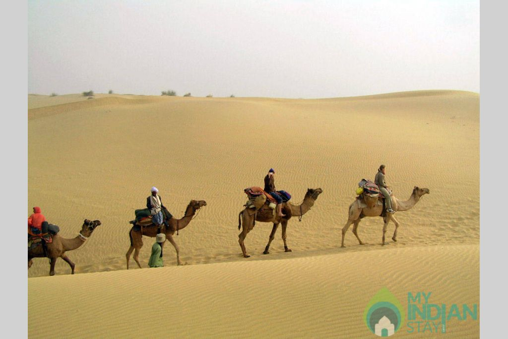 Camel Safari in a Tents in Sam, Rajasthan