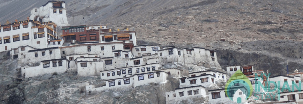 Spacious Tents To Stay In Leh