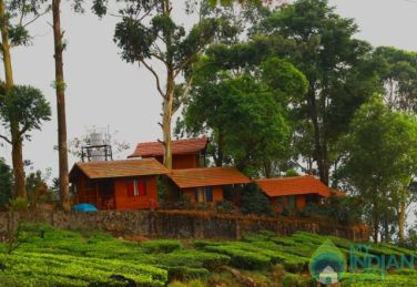 Wooden Cottages with Accommodation Only, Munnar