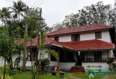 Stay with calm and Peaceful House in lush greenery