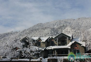Cottages stay  In Manali