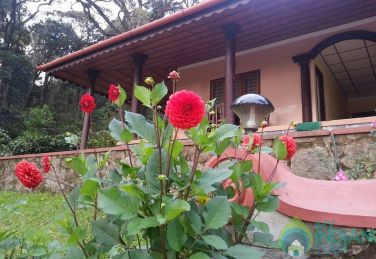 5 Bedroom Cottage In Munnar, Kerala
