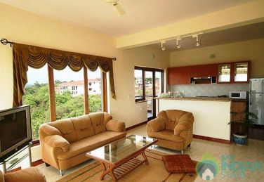 Apt with Ocean and Valley Views In Dona Paula